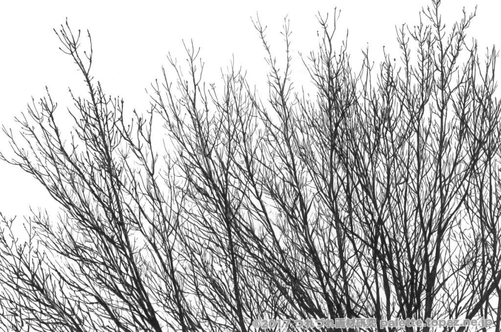 画材:シグノRT1 0.28 紙:KMKケント